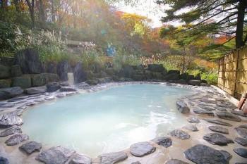 1位_福島県野地温泉ホテル鬼面の湯