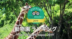 動物園ランキング